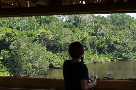 ‪‪La Selva Amazon Ecolodge‬: View