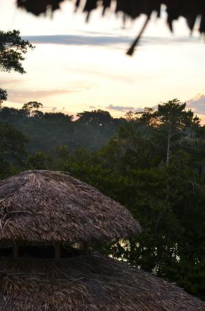 ‪‪La Selva Amazon Ecolodge‬: Sunset