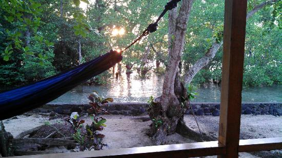 Two Fish Divers Bunaken: Right on Sea Front with Mangroves
