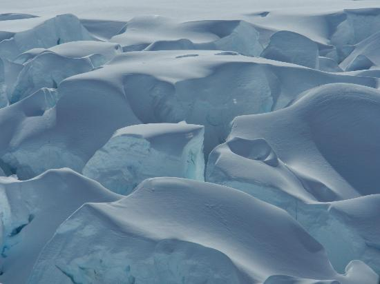 Franz Josef Glacier: beautiful Blues within the ice