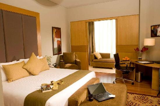 Radisson Blu Suites Gurgaon : Superior Room