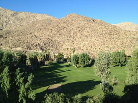 Hyatt Palm Springs: View from mountain view room