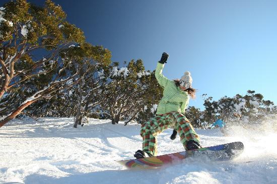 Mount Baw Baw, Austrália: Winter at Baw Baw