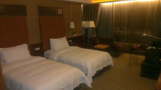 Royal Garden Hotel: Another View of My Room