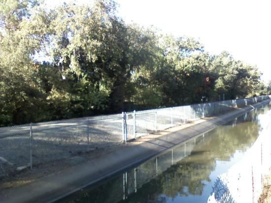 Contra Costa Canal Trail : Canal