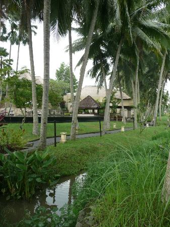 The Ubud Village Resort & Spa: Hotel grounds
