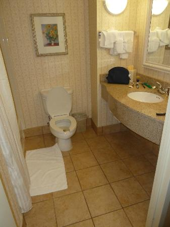 Hilton Garden Inn Fairfax: Bathroom