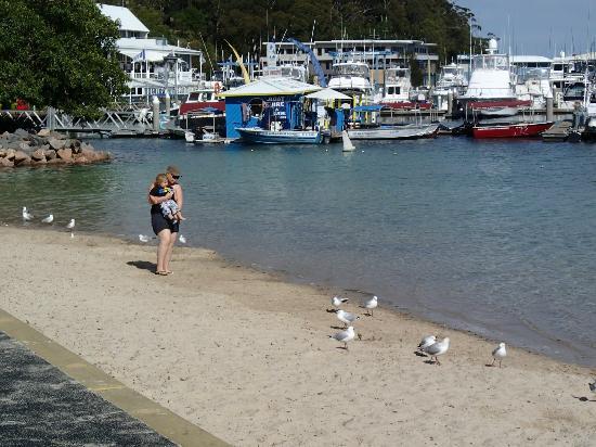 เดอะ เนลสัน รีสอร์ท: Breathtaking Nelson Bay beach.