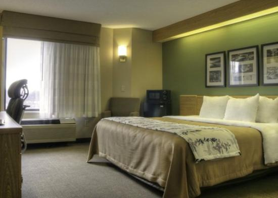 Sleep Inn & Suites: TNKing Room