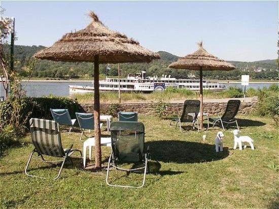 Rheinhotel Bellavista: View