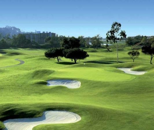 Cape Town Seamore Express Tours and Guesthouse: Around of Golf with Seamore-Express Tours and Guesthouse