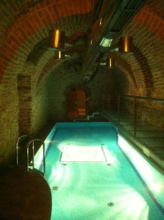 Hotel Copernicus: The tiny pool, didn't use it but looked great