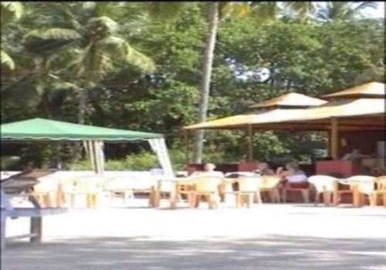 Resort Village Royale: Other