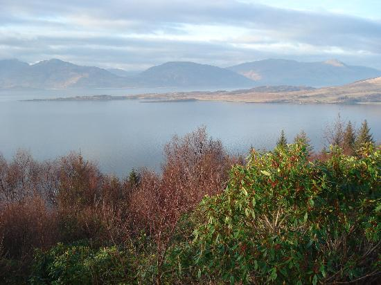 Loch Linnhe and Ardgour from the Highland Titles Nature Reserve