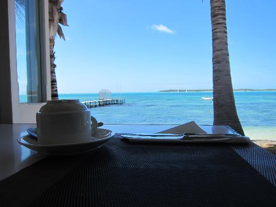 Tropical Attitude: dining 