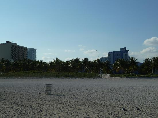 The Park Central: view from beach of hotel