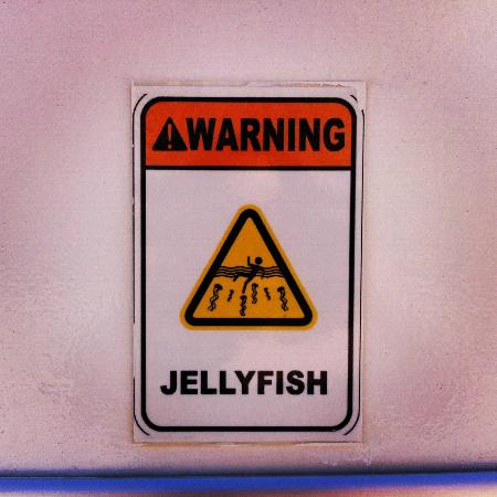 Atlantis, The Palm: Small sign on life guard seat.