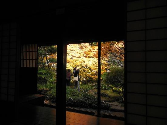 Terashima Kurando Samurai Villa: 和室からの庭の眺め