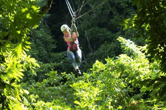 Chukka Caribbean Adventures: Zip Line Canopy at CHUKKA