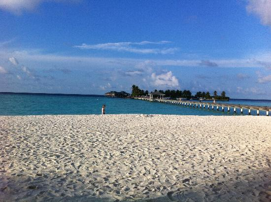 Sun Island Resort and Spa: The beach