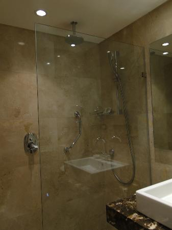 Le Meridien Pyramids Hotel & Spa: bathroom/shower
