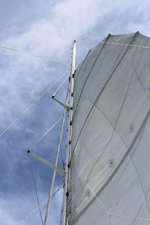 Sailing Hibiscus Catamaran Sail Tours: Sailing, not just a motor powered catamaran