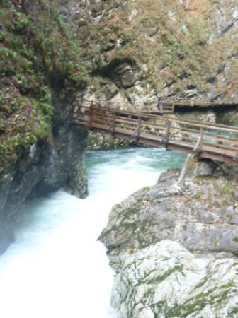 منطقة فينتاجار جورج الطبيعية: Gola del Vintgar