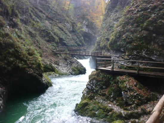 Vintgar Gorge (Soteska Vintgar): Gola del Vintgar