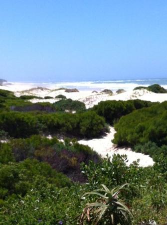 Moya Manzi Beach House : Blick vom Balkon