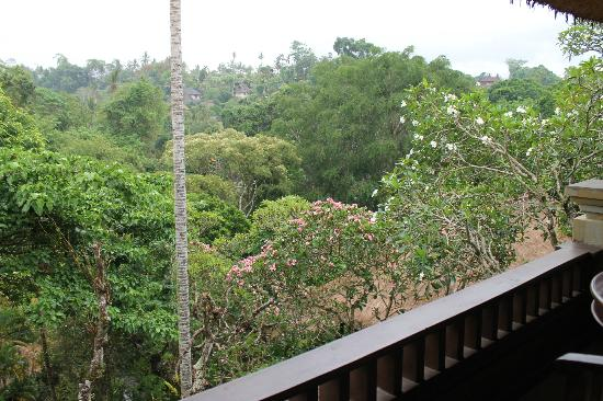 Hotel Tjampuhan & Spa: Beautiful vista