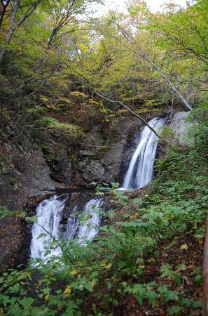 Nichien Momiji Line: 太閤下ろしの滝