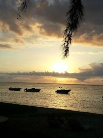 Les Lataniers Bleus: La plage le soir