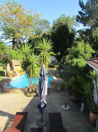 Blue Oyster B&B: Poolbereich im Garten