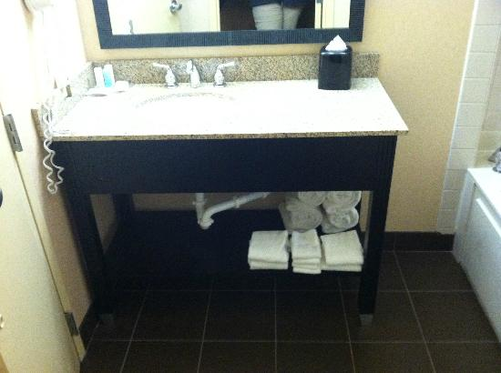 Comfort Inn University: Bathroom