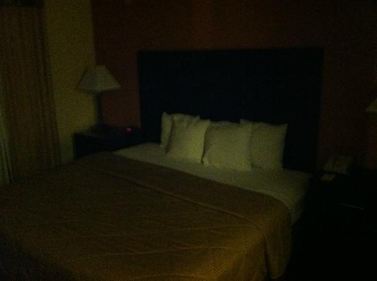 Comfort Inn University : Bedroom