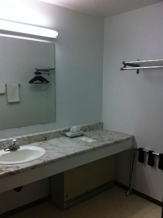 Sturgeon Lake, MN: Bathroom vanity had large counter and nicely separated from toilet/shower.