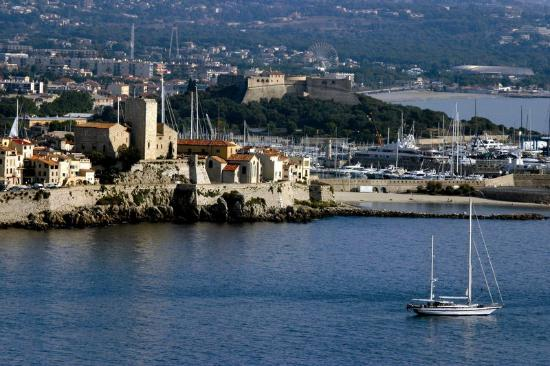Apparthotel Olympe a Antibes : Property Area