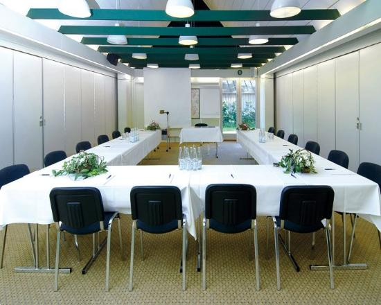 Hotel Nørrevang: Meeting Room