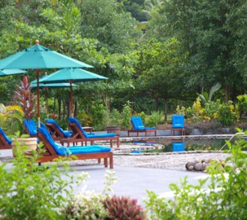 Rosalie Bay Resort : Pool