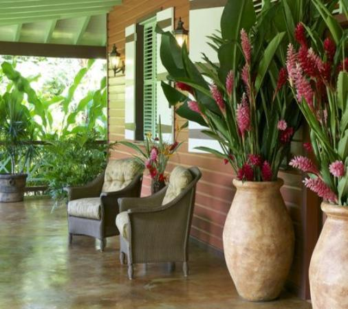 Rosalie Bay Resort : Reception