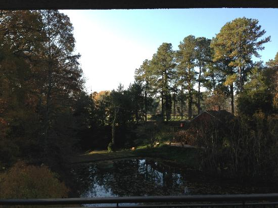 "Providence Hall Guesthouses: ""Pond View"" room from second floor balcony"