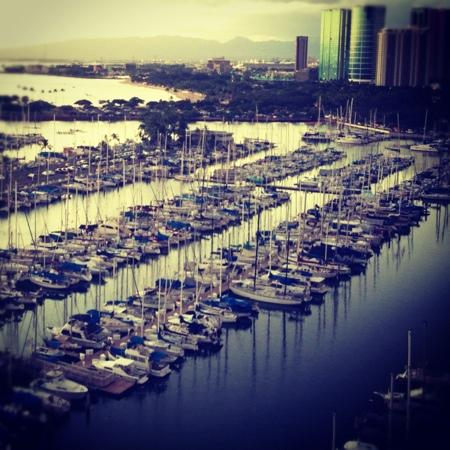 Ala Wai Yacht Harbor : sunset