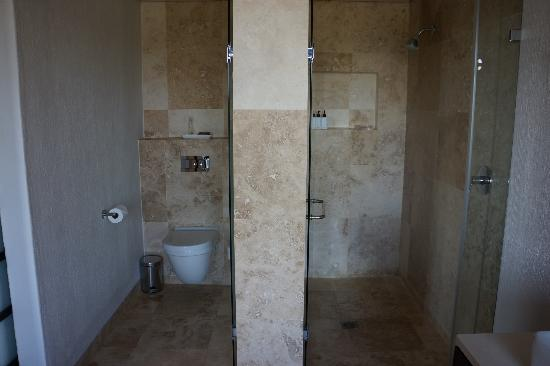 Kapama River Lodge: Separate toilet and shower