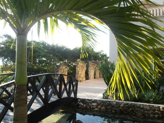 Dreams Punta Cana Resort & Spa: Outside the Mexican restaurant