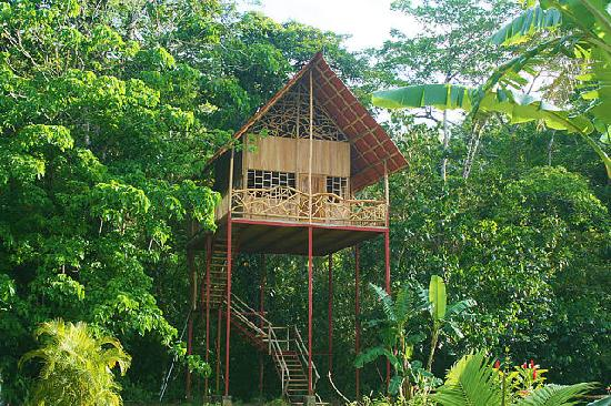 Aguas Zarcas, Costa Rica: Tree House w/loft, kitchen, bath
