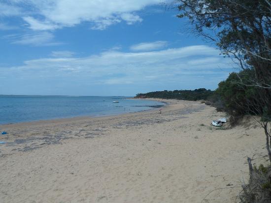 Seas The Day B&B: The beach