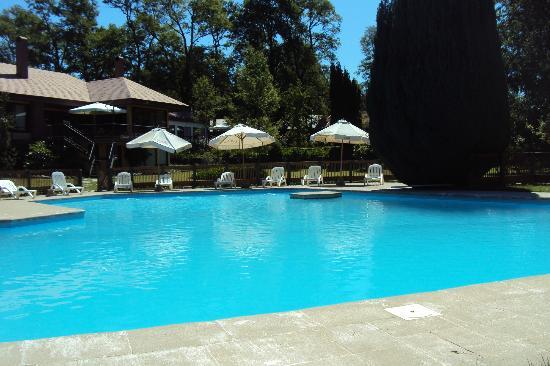 Hotel Pucon Green Park: Piscina