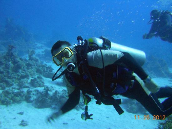 Pyramids Diving Center: posimek