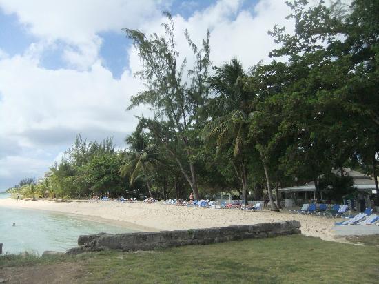 Savannah Beach Hotel: beach