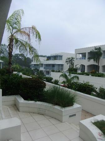 Savannah Beach Hotel: view from the verandah, on the only afternoon it rained!